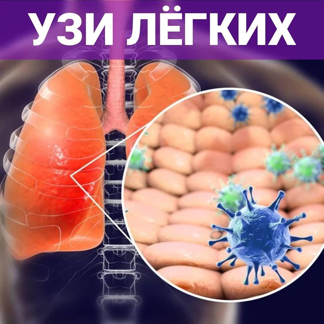УЗИ лёгких в Минске
